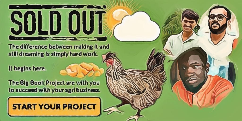 How To Start A Poultry Farm - SOLD OUT