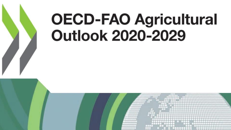 OECD - FAO Agricultural Outlook 2020-2029 Front Cover Logo