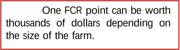 One FCR Point Can Save Lots of Money in Poultry Farming Dhia Alchalabi Quote