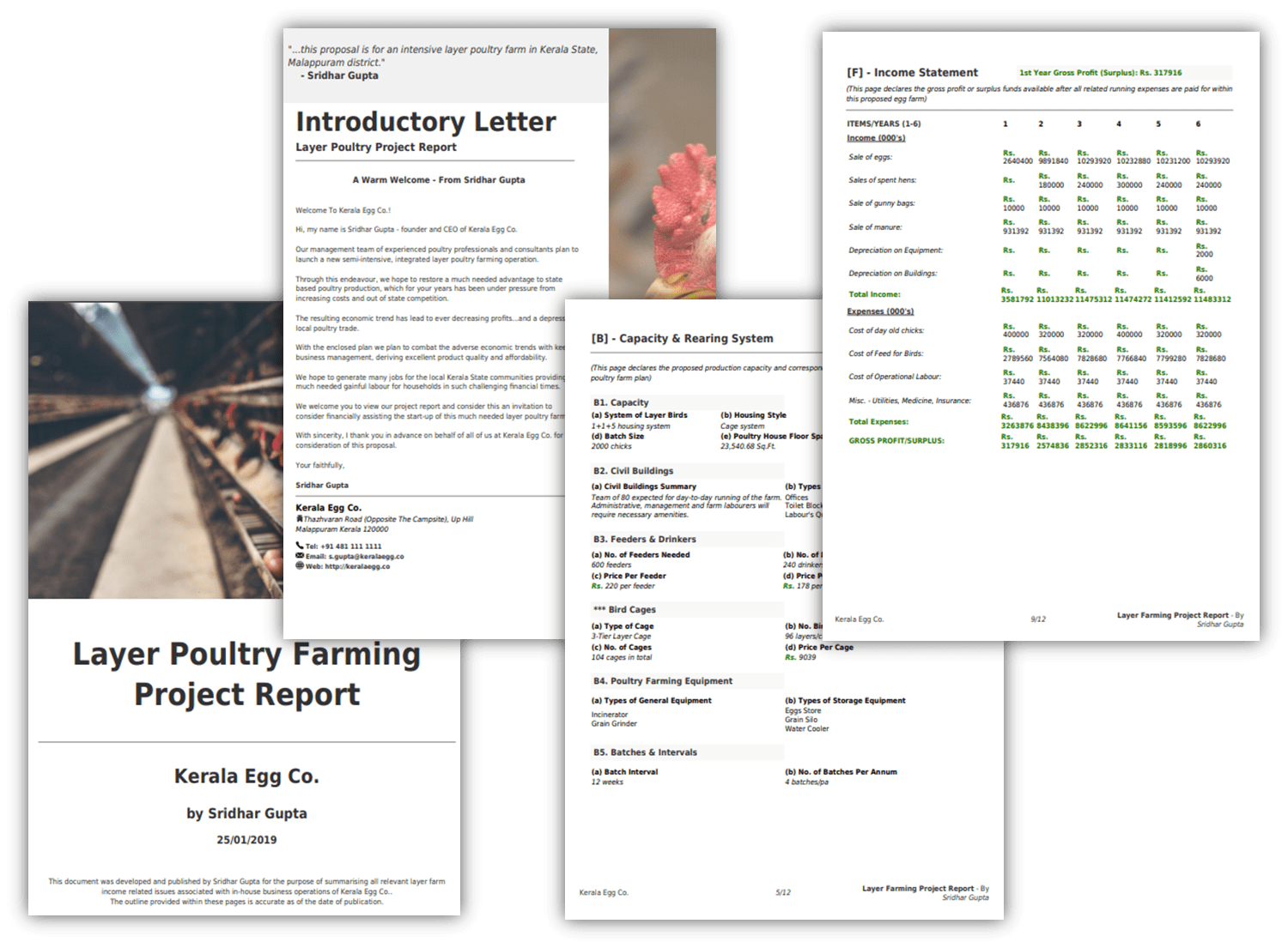 Example Layer Farming Project Report 10000 birds (Get PDF