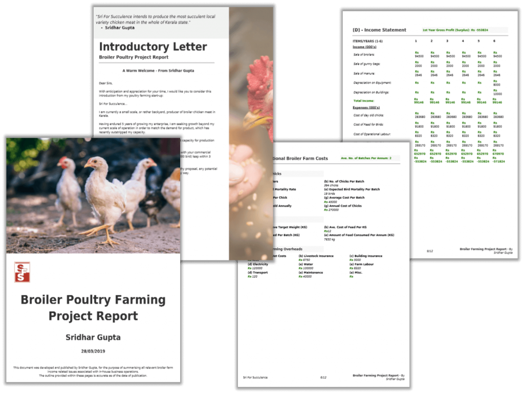 Broiler Farming Project Report PDF