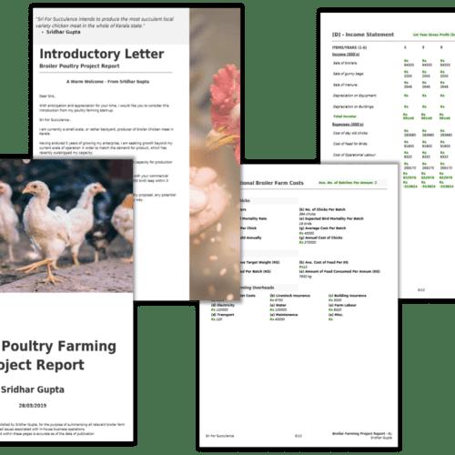 Broiler Farming Project Report PDF