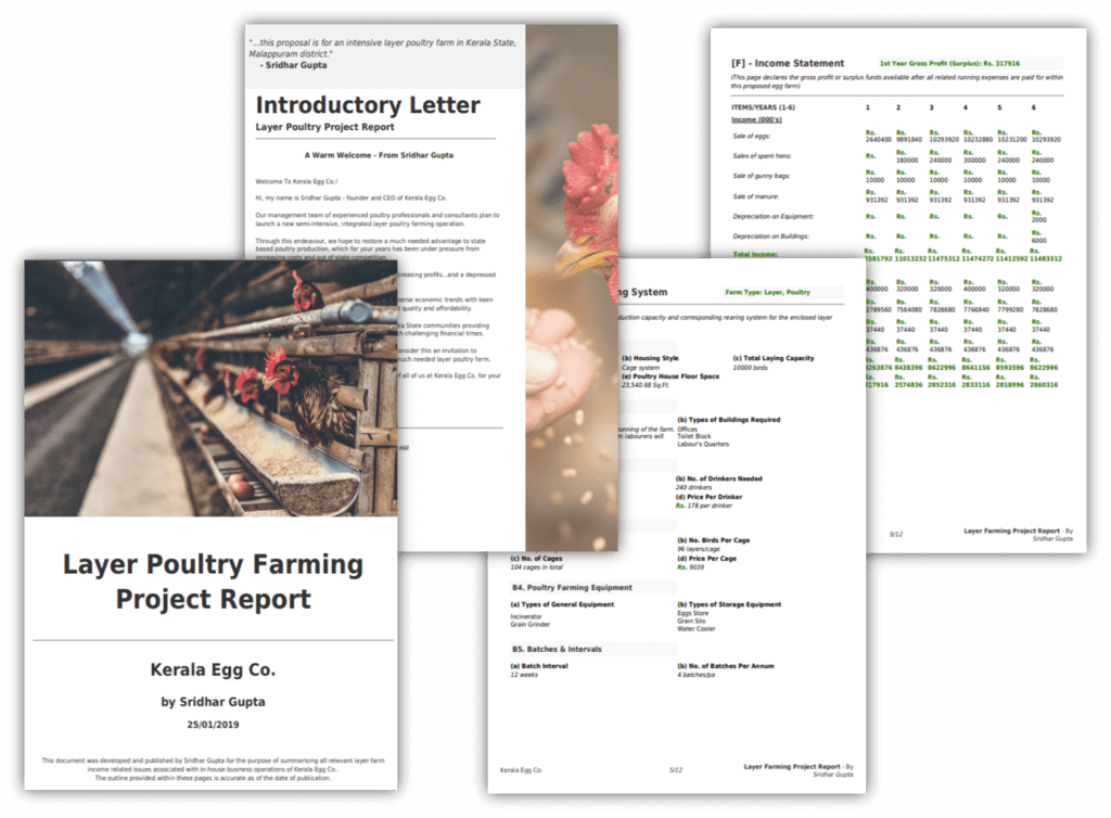 Sample Poultry Farming Project Report