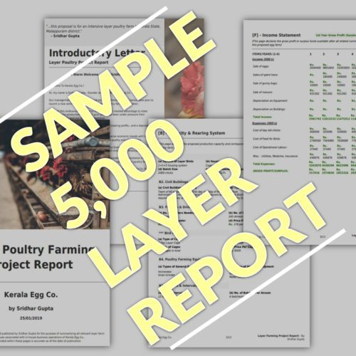 Layer Farming Project Report 5000 birds PDF Sample