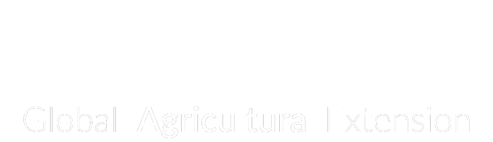 The Big Book Project
