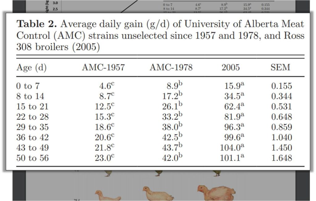 Average daily weight increase of a broiler bird