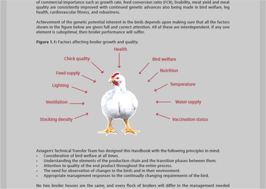 factors affecting broiler growth and quality insert