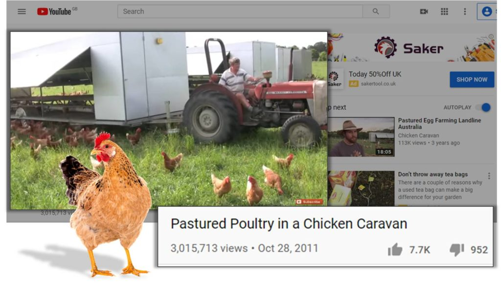 Pasteured Poultry in a Chicken Caravan