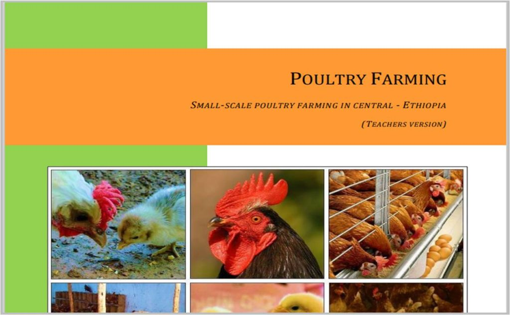 Small Scale Poultry Farming