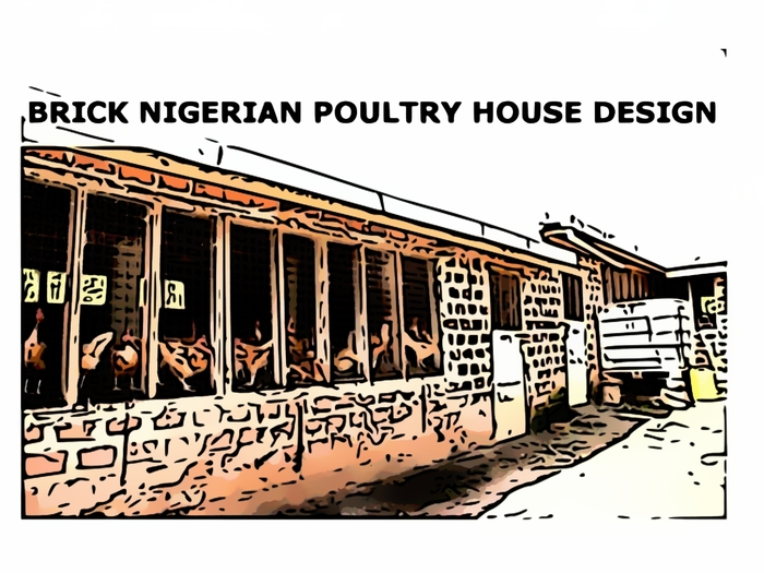 Designing Your Poultry House
