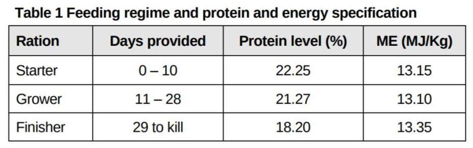Broiler Feeding Regime