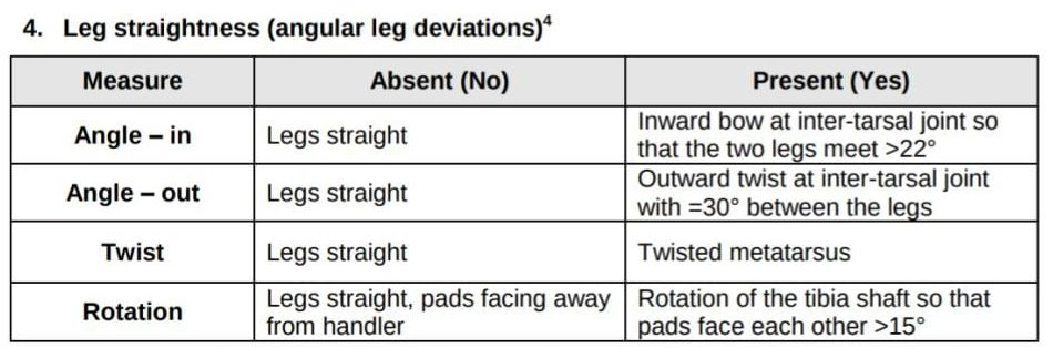 Leg straitness in broilers