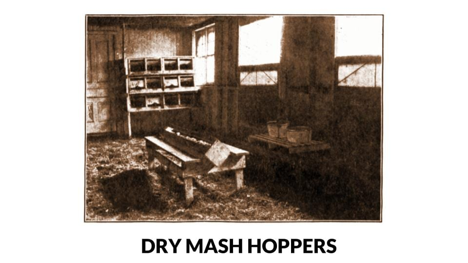 Wooden Layer Dry Mash Hopper Photo