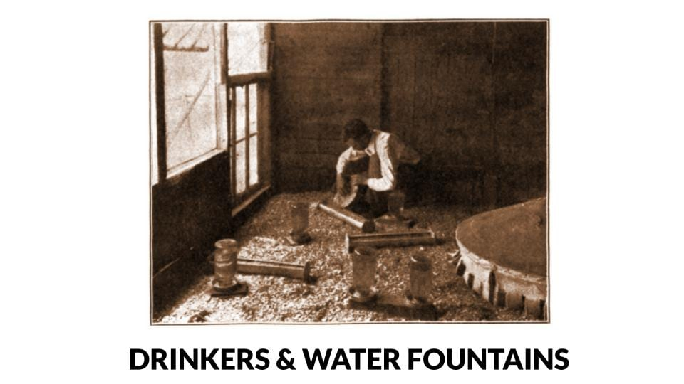 Man filling trough feeder and water fountains for brooder house