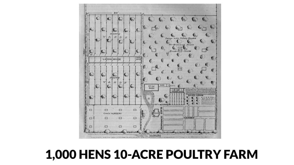 1,000 hens and 10 acre poultry farm plans