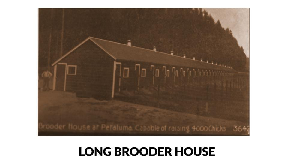 Long Brooder House