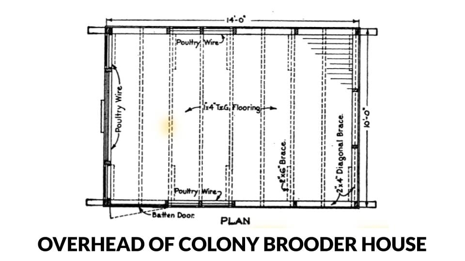 Overhead view of a colony style brooder house