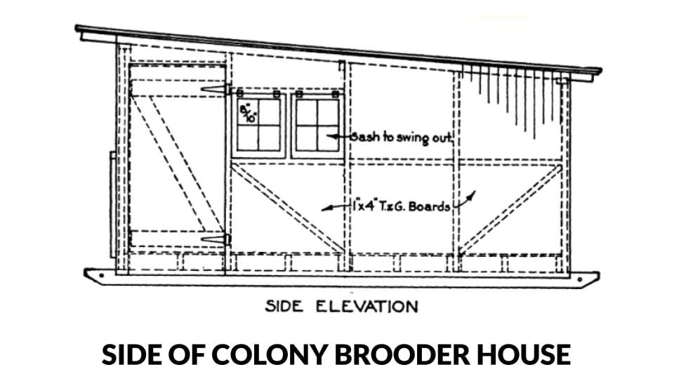 Side elevation of a colony style brooder house