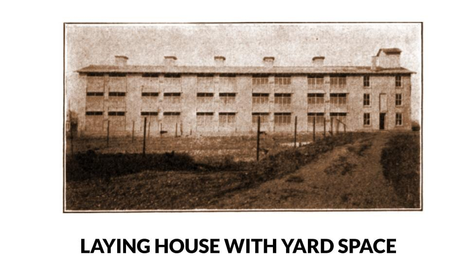 3 storey laying house with yard space