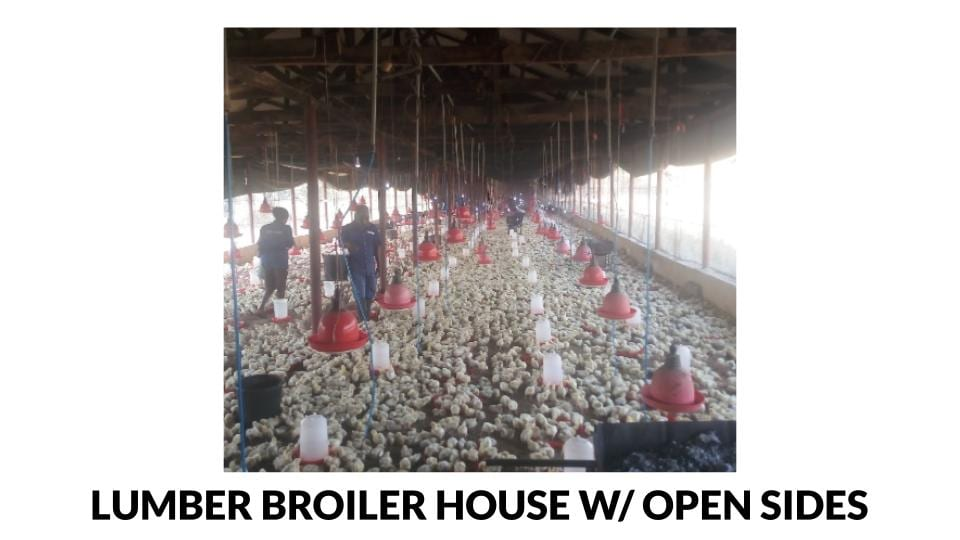 Lumber Broiler House w/ Open Sides