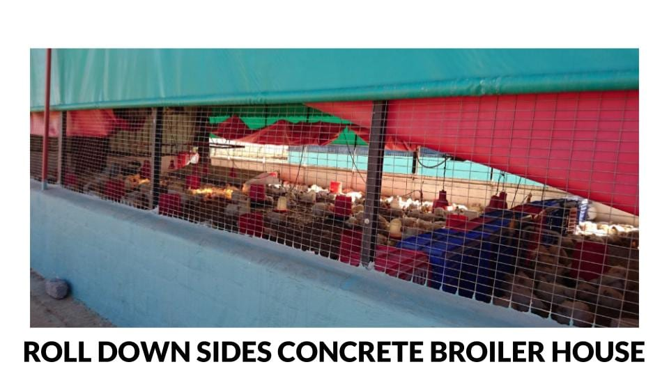 Roll down open sided concrete broiler house