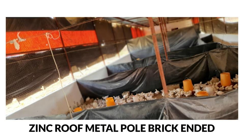 Zinc roof metal pole brick ended open sided broiler house photo