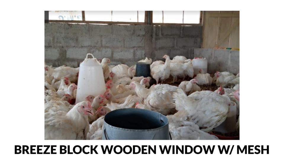Breeze block wooden window frame open sided poultry house ph0to