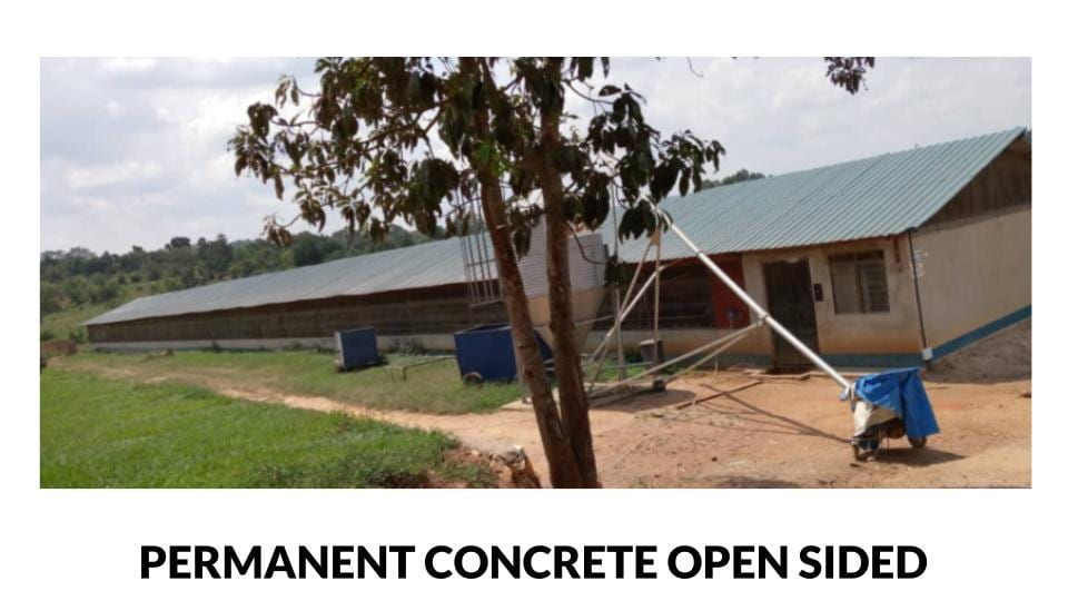 Permanent concrete open sided poultry house photo