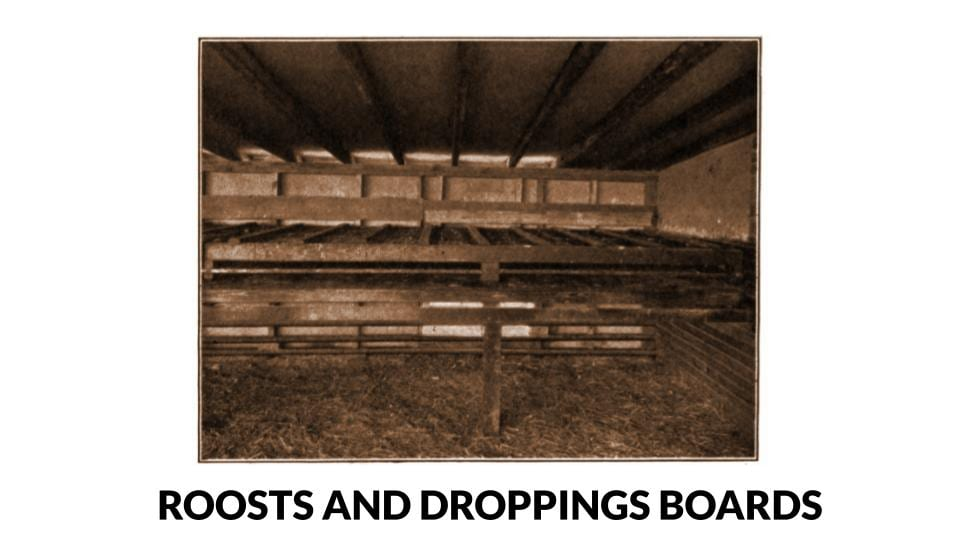 Roosts And Droppings Boards Photo