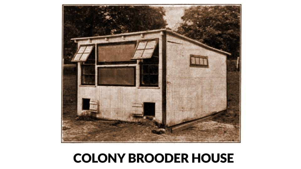 Colony Brooder House Photo