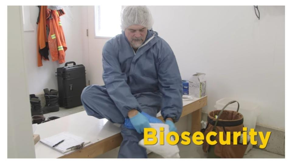 Broiler farm biosecurity