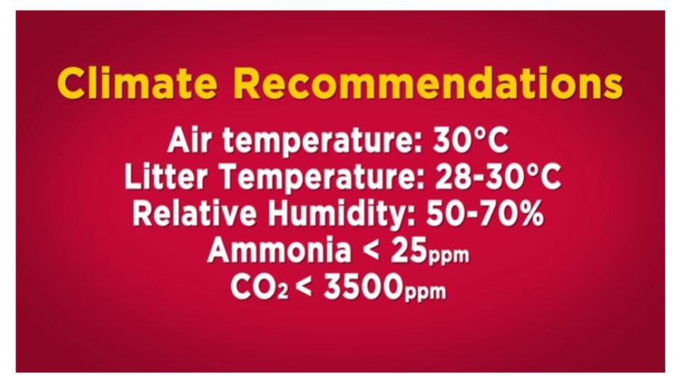 Climate Recommendations