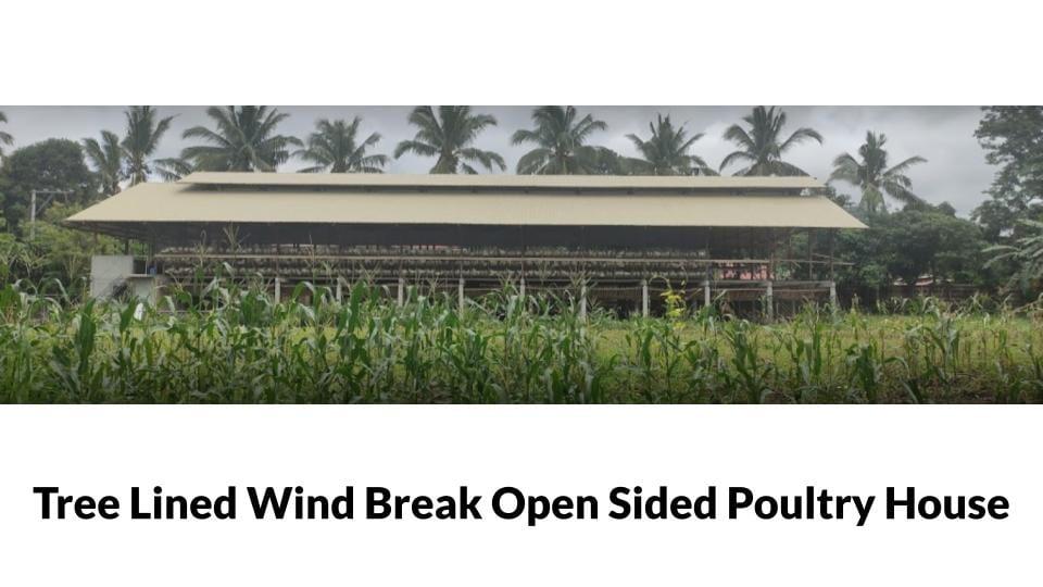 ENE Poultry Farm Photo 1