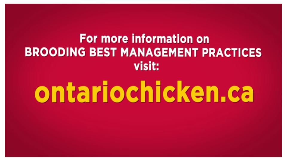 Ontario Chicken Canada