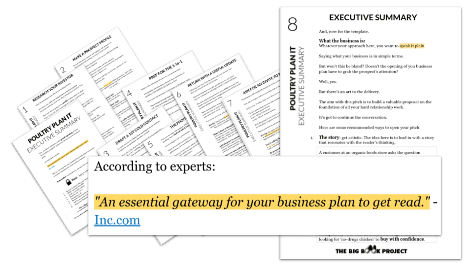Snapshot of a PDF with Executive Summary Templates